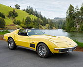 VET 05 RK0263 01