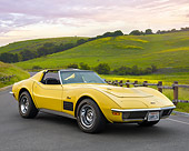 VET 05 RK0264 01