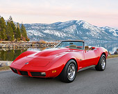 VET 05 RK0265 01