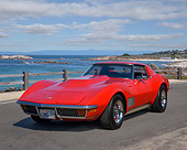 VET 05 RK0266 01