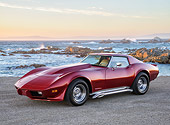 VET 05 RK0272 01