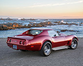 VET 05 RK0273 01