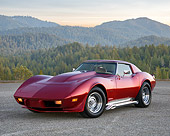 VET 05 RK0274 01