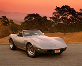 VET 05 RK0113 01