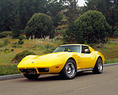 VET 05 RK0128 02