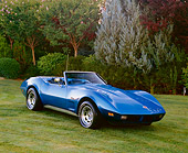 VET 05 RK0133 03