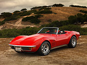 VET 05 RK0141 01