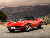 VET 05 RK0142 01