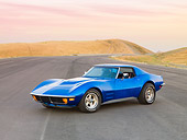 VET 05 RK0176 01