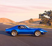 VET 05 RK0179 01