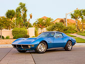 VET 05 RK0189 01