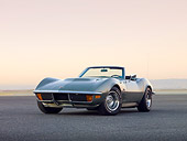 VET 05 RK0194 01