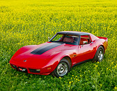VET 05 RK0196 01