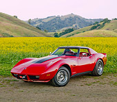 VET 05 RK0198 01