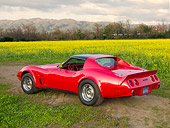 VET 05 RK0200 01