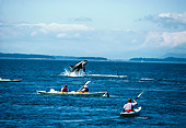 WHA 03 JM0001 01
