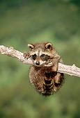 WLD 01 TK0001 01