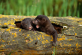 WLD 03 TK0001 01