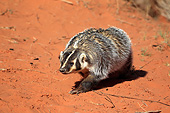 WLD 09 AC0002 01