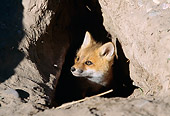 WLD 11 BA0001 01