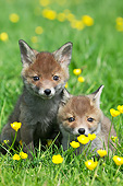 WLD 11 GL0027 01
