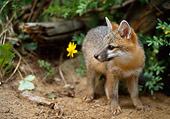 WLD 11 RW0001 01