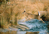 WLD 13 TK0004 01