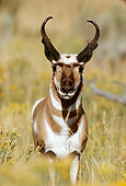 WLD 21 TL0002 01