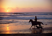 WRG 01 RC0001 01