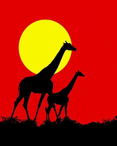 AFW 09 JZ0005 01 © Kimball Stock Graphic Of Giraffes Walking On Savanna Against Sun Kenya