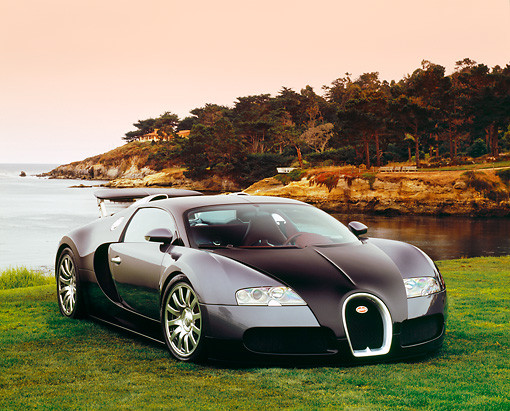 AUT 02 RK0077 05 © Kimball Stock 2006 Bugatti Veyron Black And Gray Coupe 3/4 Front View On Grass By Water Filtered