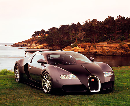 AUT 02 RK0077 03 © Kimball Stock 2006 Bugatti Veyron Black And Gray Coupe 3/4 Front View On Grass By Water Filtered