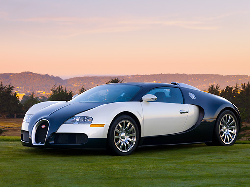 AUT 02 RK0098 01 © Kimball Stock 2007 Bugatti Veyron White And Black 3/4 Front View On Grass By Trees Mountain Sky