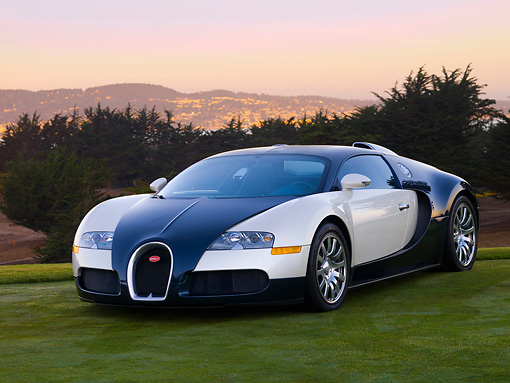 AUT 02 RK0099 01 © Kimball Stock 2007 Bugatti Veyron White And Black 3/4 Front View On Grass By Trees Mountain Sky