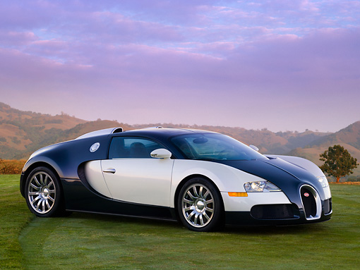 AUT 02 RK0101 01 © Kimball Stock 2007 Bugatti Veyron White And Black 3/4 Front View On Grass By Trees Mountain Sky
