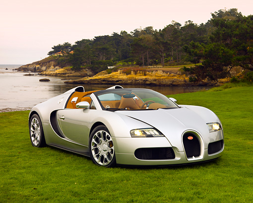 AUT 02 RK0104 01 © Kimball Stock 2008 Bugatti Veyron 16.4 Grand Sport Roadster Silver 3/4 Front View On Grass By Ocean