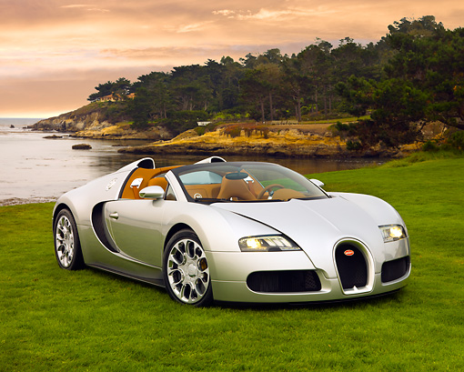 AUT 02 RK0104 02 © Kimball Stock 2008 Bugatti Veyron 16.4 Grand Sport Roadster Silver 3/4 Front View On Grass By Ocean