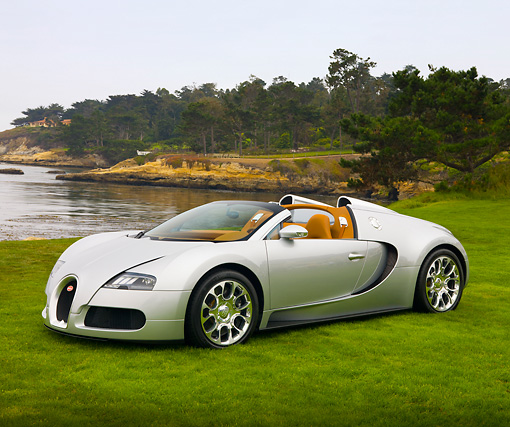 AUT 02 RK0105 01 © Kimball Stock 2008 Bugatti Veyron 16.4 Grand Sport Roadster Silver 3/4 Front View On Grass By Ocean