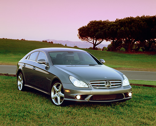 AUT 05 RK0474 02 © Kimball Stock 2006 Mercedes Benz CLS55 AMG Gray 3/4 Front View On Grass Trees Background
