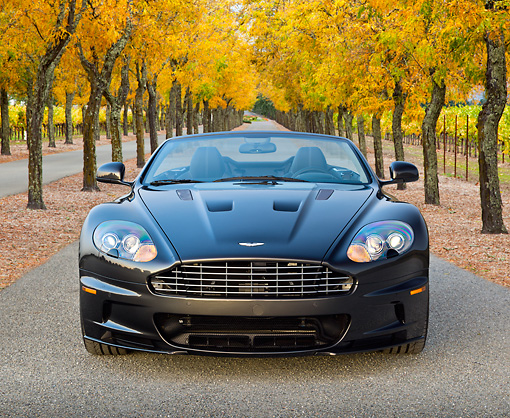 AUT 06 RK0182 01 © Kimball Stock 2012 Aston Martin DBS Gray Front View On Pavement By Autumn Trees And Vineyard