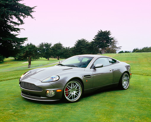 AUT 06 RK0079 05 © Kimball Stock 2005 Aston Martin Vanquish Gray 3/4 Side View On Grass By Trees