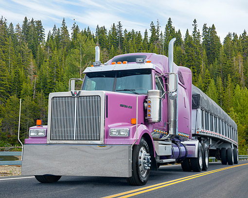 AUT 07 BK0057 01 © Kimball Stock 2016 Western Star 4900 Purple 3/4 Front View By Trees