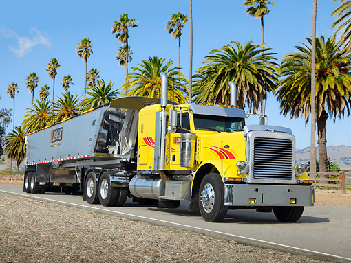 AUT 07 RK0204 01 © Kimball Stock 2009 Peterbilt 389 Yellow With 2012 East Trailer 3/4 Front View On Pavement By Palm Trees