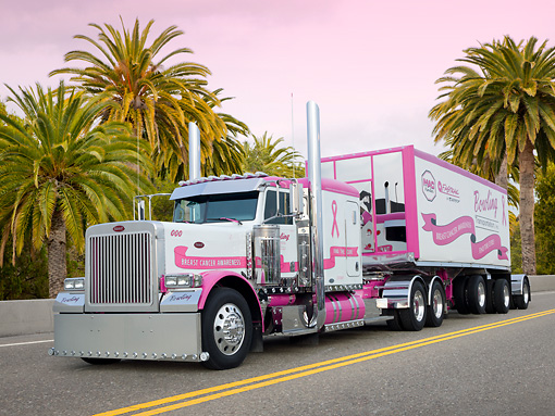 AUT 07 RK0209 01 © Kimball Stock 2006 Peterbilt 379 Pink And White 3/4 Front View On Road By Palm Trees At Dusk