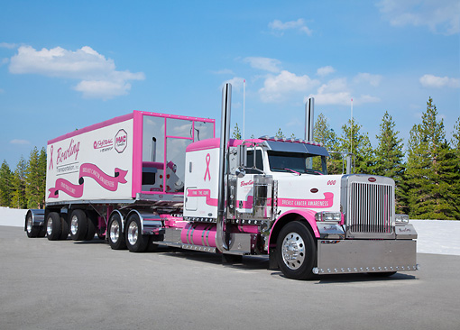 AUT 07 RK0210 01 © Kimball Stock 2006 Peterbilt 379 Pink And White 3/4 Front View On Pavement By Evergreen Trees