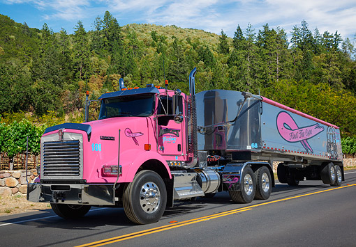AUT 07 RK0389 01 © Kimball Stock 2013 Kenworth 7800 Pink 3/4 Front View On Road By Vineyard