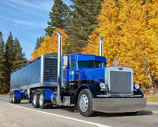 AUT 07 RK0453 01 © Kimball Stock 2005 Peterbilt 379 Blue And Black 3/4 Front View On Road By Autumn Trees