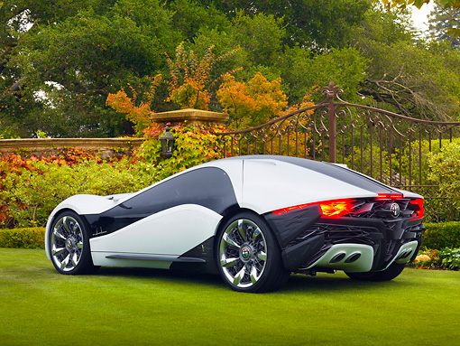 AUT 09 BK0026 01 © Kimball Stock Alfa Romeo Pandion Concept Black And White 3/4 Rear View On Grass By Gate And Autumn Trees