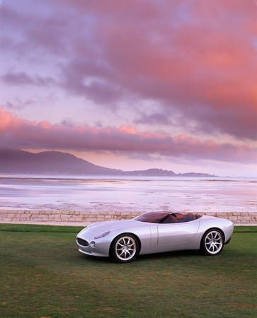AUT 09 RK0381 02 © Kimball Stock Jaguar F-Type Roadster Concept Car Silver 3/4 Side View On Grass By Water Filtered