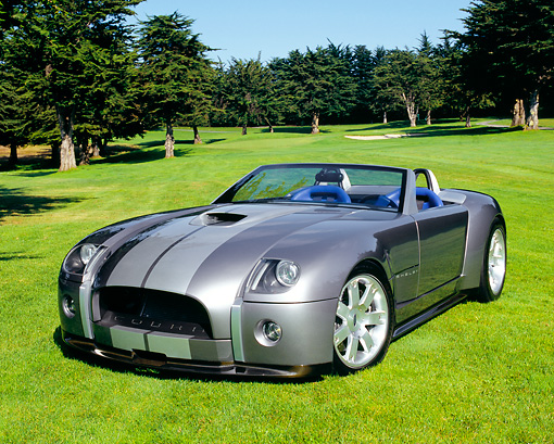 AUT 09 RK0719 04 © Kimball Stock Ford Shelby Cobra Roadster  Gray Silver Stripes 3/4 Front View On Grass